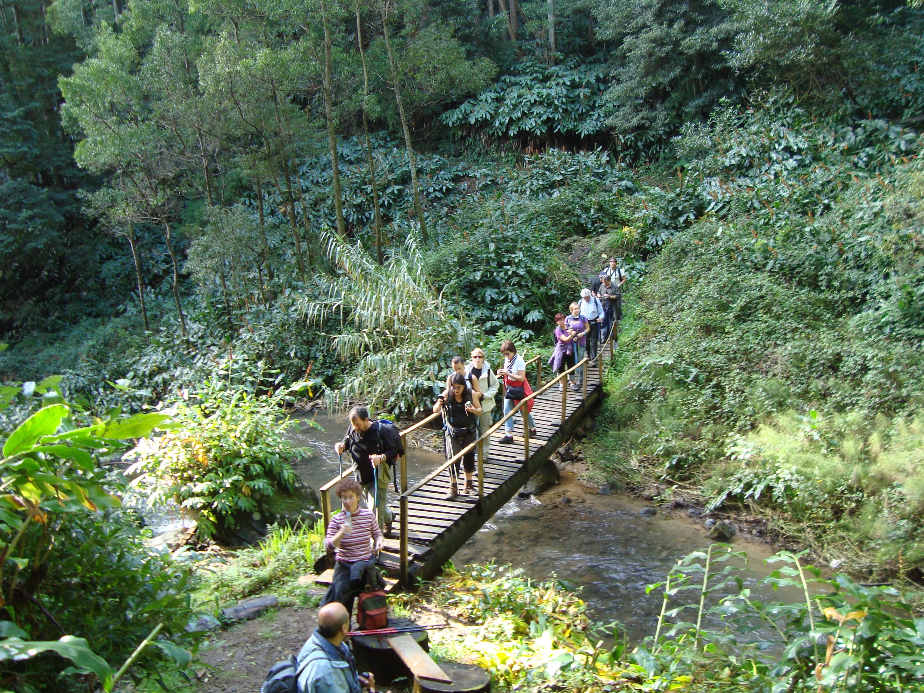 Azoren_Wanderung Faial da Terra 4_Sao Miguel