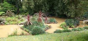 Azoren_Terra Nostra Park in Furnas_Sao Miguel