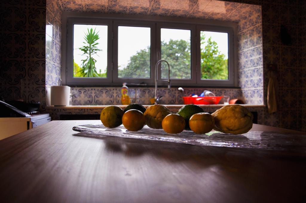 Quinta Minuvida_Apartment Beispiel Küche Detailansicht