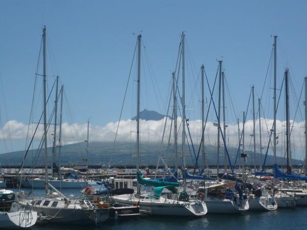 Faial_Hafen Horta