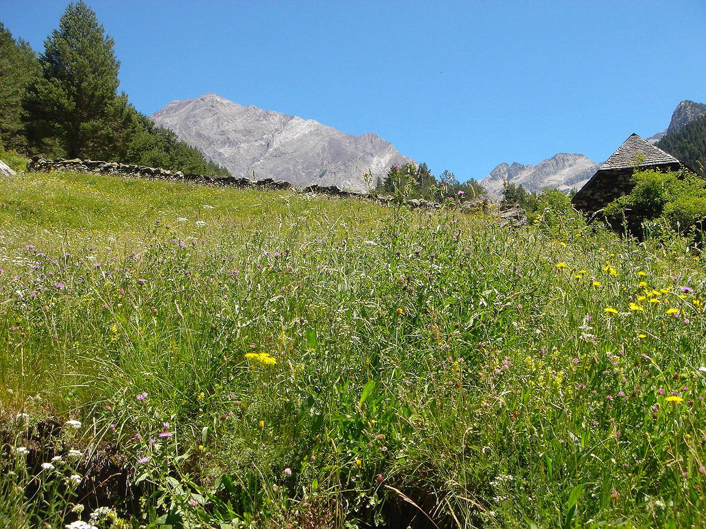 Benasque-Tal auf dem Pyrenäen-Fernwanderweg GR12