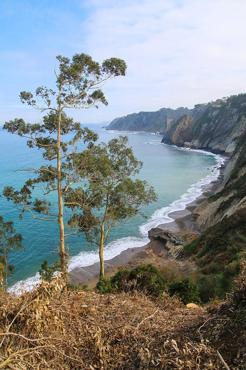 Küsten-Panorama