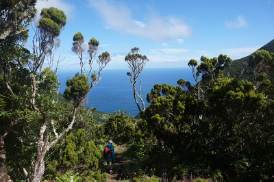 Sao Jorge_Natur mit Wanderer